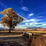 Silver Saddle Ranch
