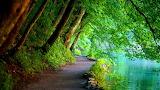 nature36