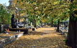 jesień - foto -K.S.- Altro