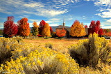 Autumn Image Etna California USA