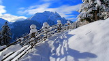 Winter Scene High In The Mountains USA