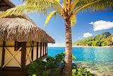 Lugar tropical