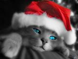 Nowy św. Mikołaj