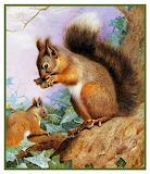 Squirrels in a Tree ~ Archibald Thorburn