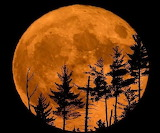 Moon - Super moon - Maine