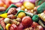 MulticolouredSeashells