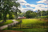 Country-the-pasture-mike-savad