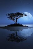 Blue moon night sky