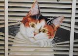 Lowell Herrero 'Cat Tails'