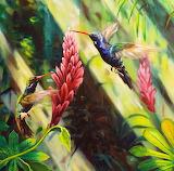 ~Hummingbirds~