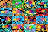 Rainbow-chameleon