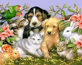 Pets and Flowers