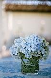 Placid Blue Flowers