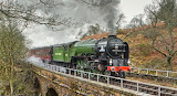 Tornado on the North York Moors Railway