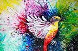 Bird-colorful-random-Favim com-320706