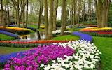 Keukenhof Park, The Netherlands