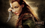 The Hobbit - Desolation of Smaug - Tauriel
