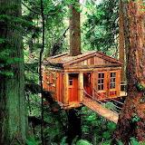 Treehouse, Oregon