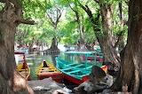 Lake-boats-trees-Mexico
