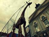 Days of street culture in Kalisz