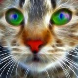 ☺ Fractal kitten...