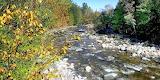 Mile 1855 Peabody River