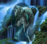 Wolf and waterfall