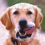"""/POTW/""""Hobbies""""-Puzzle &dogs"""
