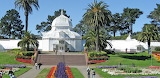 The Golden Gate Conservatory