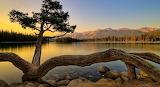 Stillness of the mountains