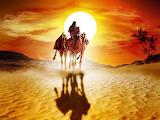 Desert Nomads...