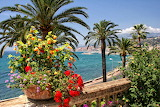 Sea, flowers, palm trees, coast, France, house, Menton