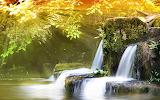 Amazing-Nature-