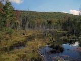 Mile 1890 Beaver Pond