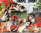 Garden Patio Cats