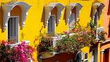 Cartagena, windows, balconies, flowers, yellow facade building