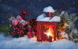 Fire Berry Snow Lamp Balls 558611 1280x800