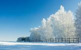^ Christmas-Winter