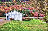 Shack-autumn-landscape