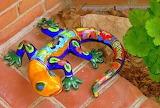 Colorful-lizard