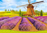 windmill in lavender field