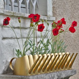 Rotate the Poppy Planters