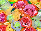 Colorful-roses-background