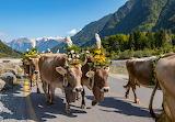 Glarus Switzerland - Photo from Piqsels id-fzbkp