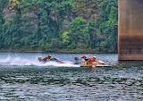 Boat-races 9-5-04