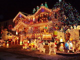#Christmas Light Extravaganza
