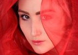 Veiled in Red