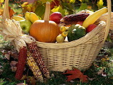 Harvest of fall's fruits