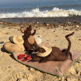 Sunbathing mice