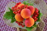 healthy food-currants & apricots